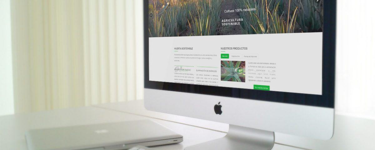 diseño tienda online de aloe vera